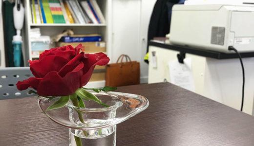 事務所に花を添えて。